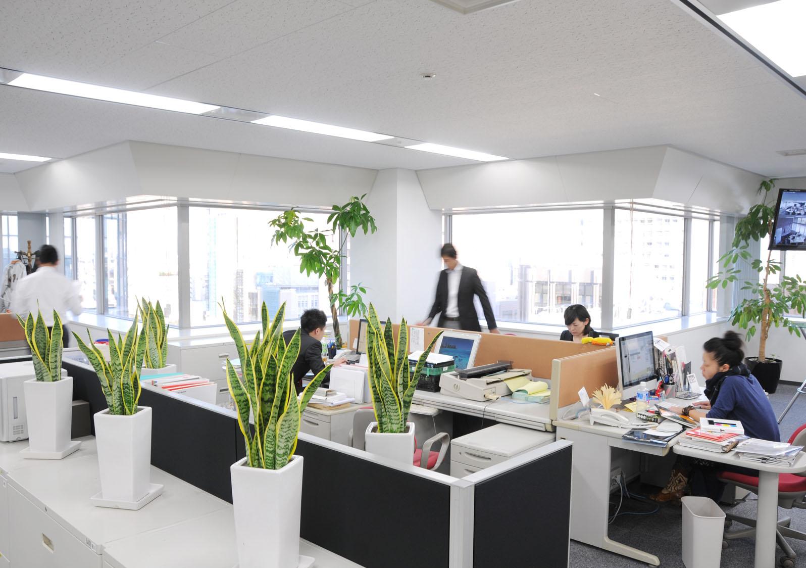 16株式会社ビジュアル・プロセッシング・ジャパン Tokyo Head Office
